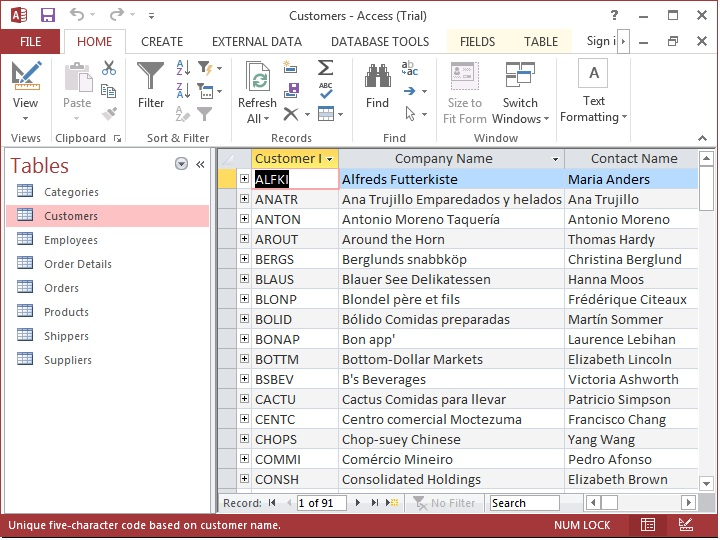 ms access customer database