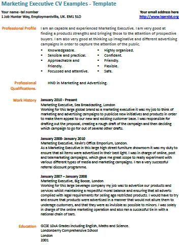 Marketing Executive CV Example - Learnistorg