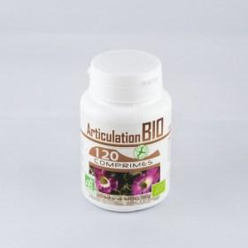 thumbnail_Articulation_bio