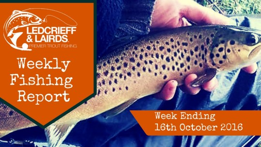 fishing-report-cover-w%2fe-16th-oct