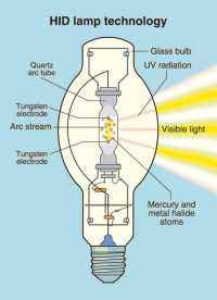 HID Lights for Beginners - High Intensity Discharge Lamps ...