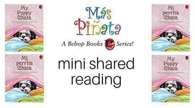 mini shared reading