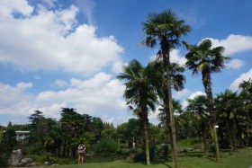 grandbondmilieu_jardin_botanique_shanghai