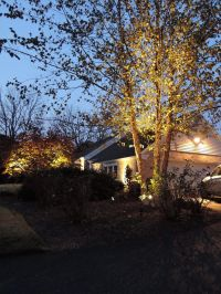 Kichler Landscape Lighting and Security Lighting in ...