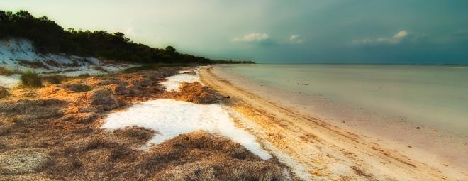 Sand Dunes of St. Joseph's Peninsula