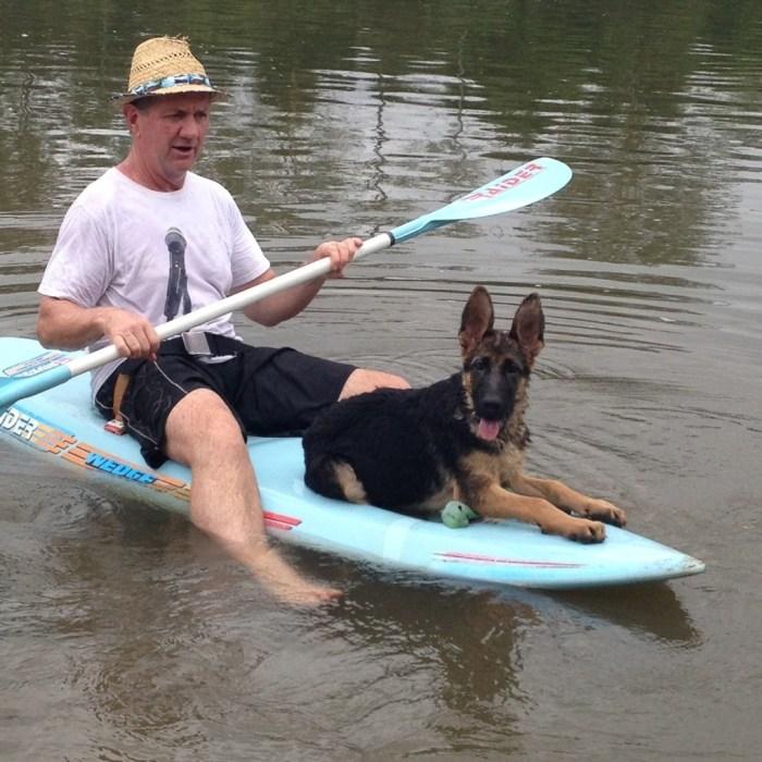 geman-shepherd-male-puppy-on-canoe