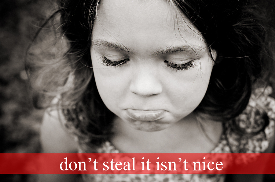 Stealing isn\u0027t nice\u2026 (important notice about copyright protection