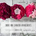 DIY: Ombre Mini Carnation Arrangements