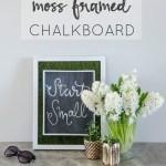 DIY Moss Framed Chalkboard