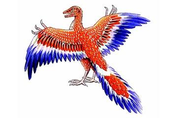 jurassic-bird