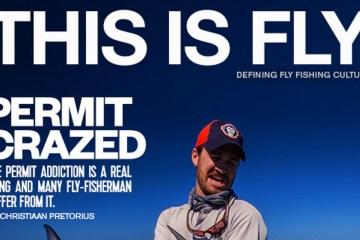 fly64