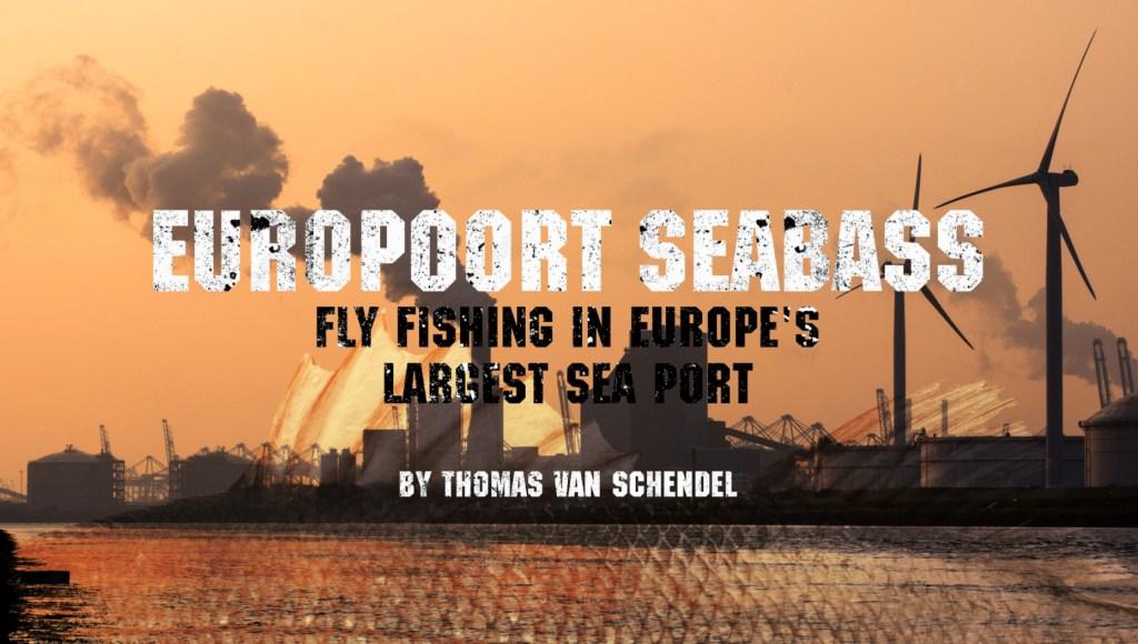 europort-seabass