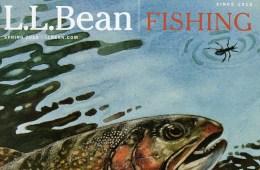 cover-bean