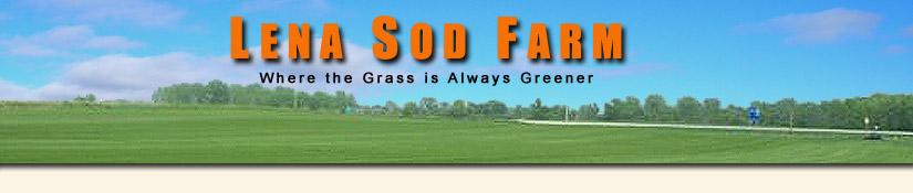 Prepare Soil For Sod