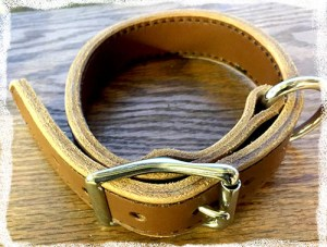 Lenwood K9-1 Collar