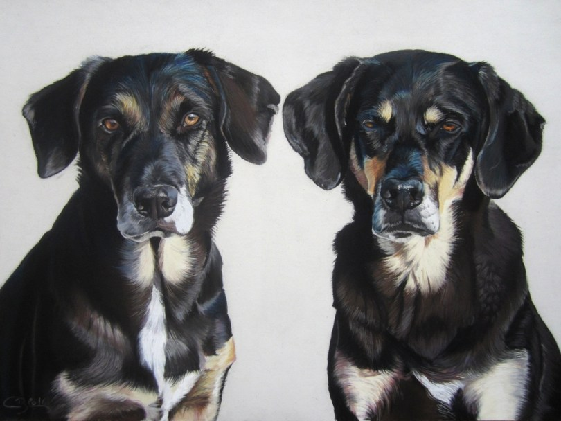 Oeuvre de Cindy Barillet artiste peintre animalier