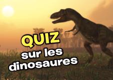 quiz_dino_petit