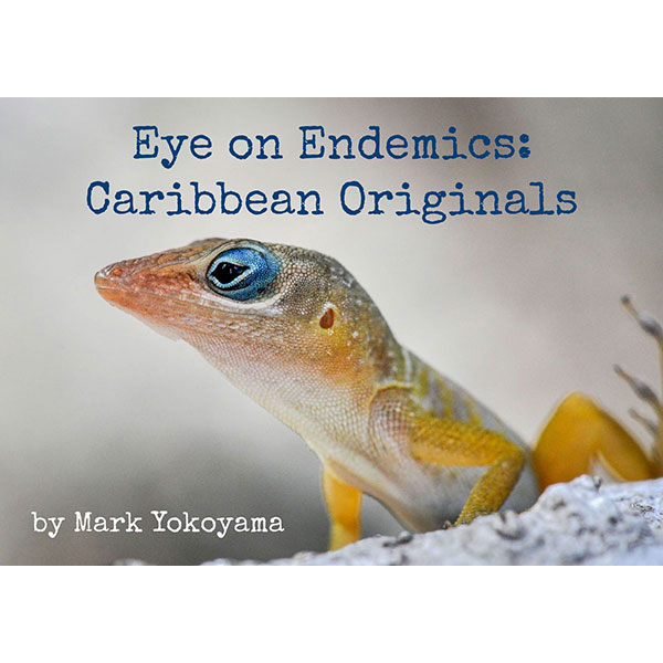 Eye-on-Endemics-homesquare
