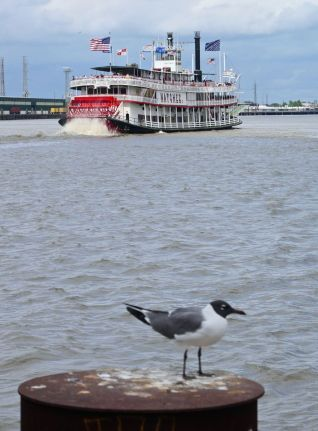 new-orleans20