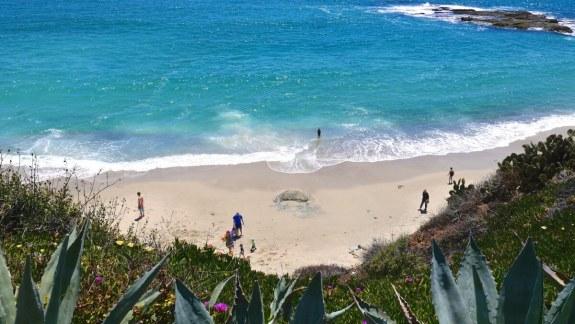 treasure island beach californie