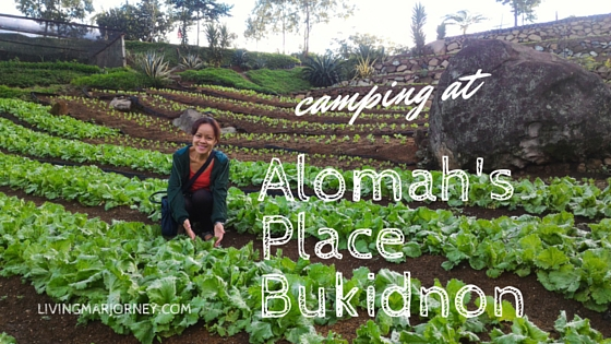 Alomah's Place Bukidnon