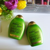 OGX Tea Tree & Mint Shampoo and Conditioner