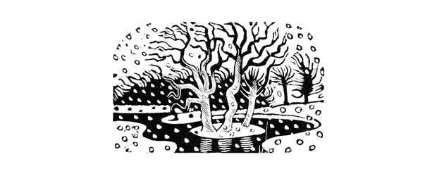 Letterpress Printing and Christmas cards - Blog Letter Press The - christmas cards black and white