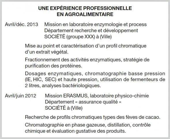cv experiences professionnelles ou experience professionnelle