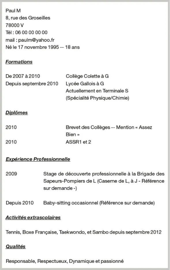 exemple cv alternance informatique
