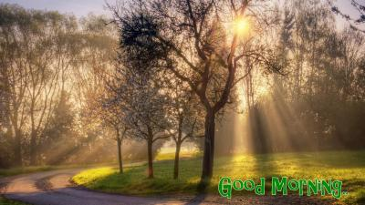Good Morning Wallpapers Free Download