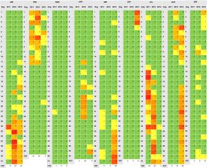Hoofdpijnrapport 2013