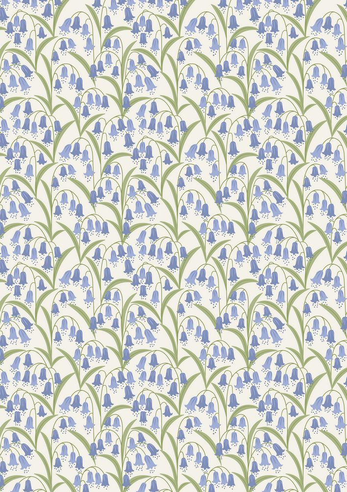A127.1 - Bluebells on white