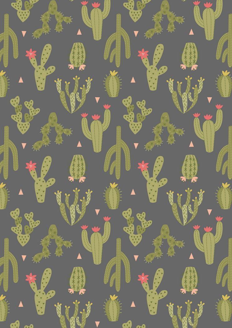 A202.3 - Green cactus on dark