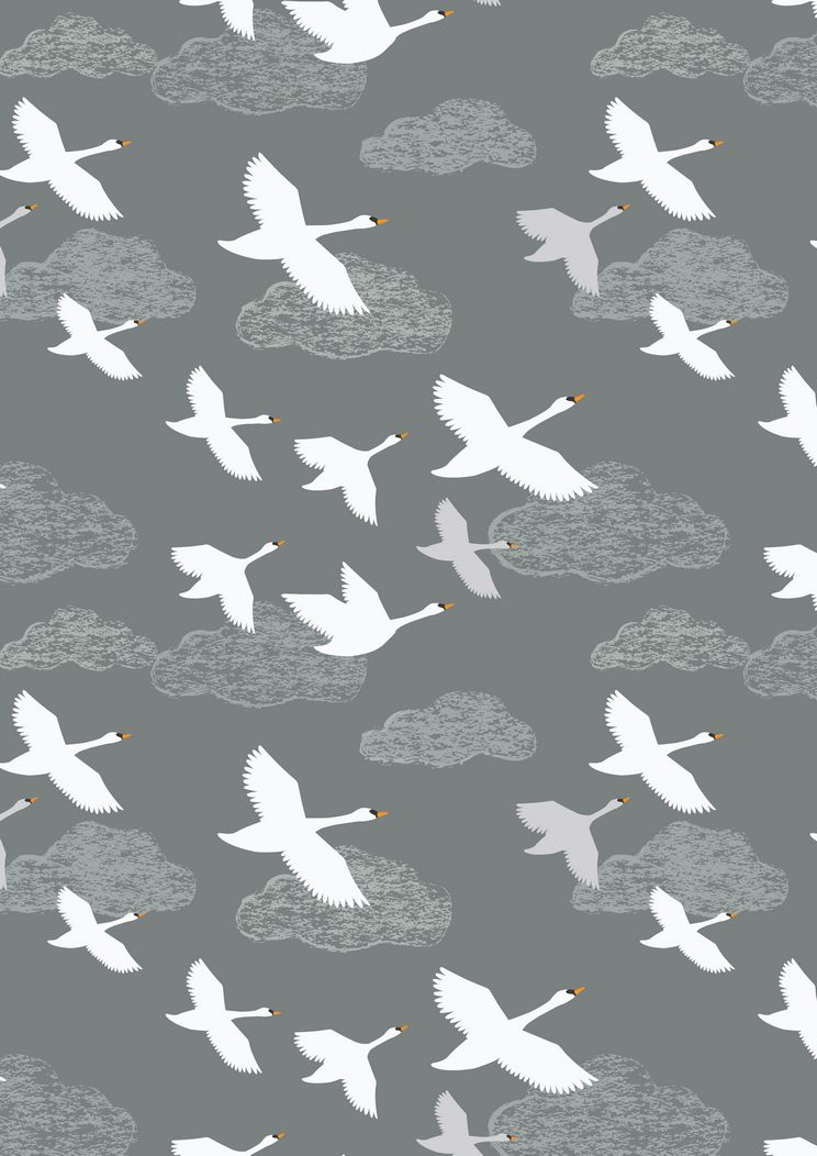 A221.3 - Swans in flight on grey