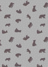 A314.2 Starry bear grey