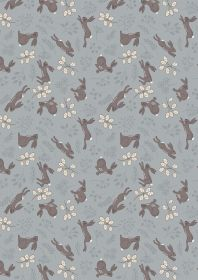 A324.2 Hare grey