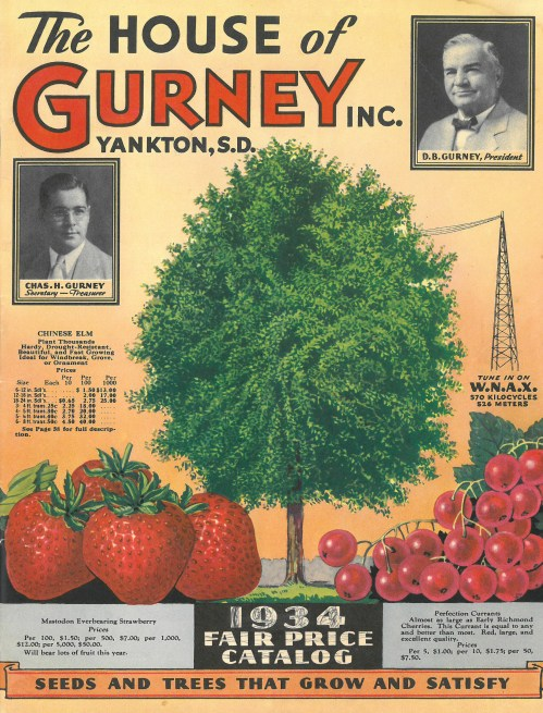 Medium Of Gurneys Seed And Nursery Company