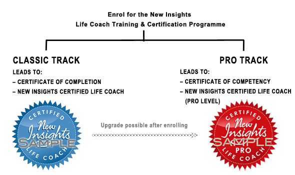Certification Options New Insights Life Coach Training Programme