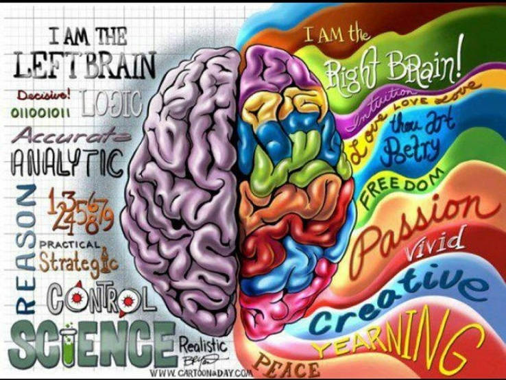 Human and Brain Centers -Two Ways Of Knowing