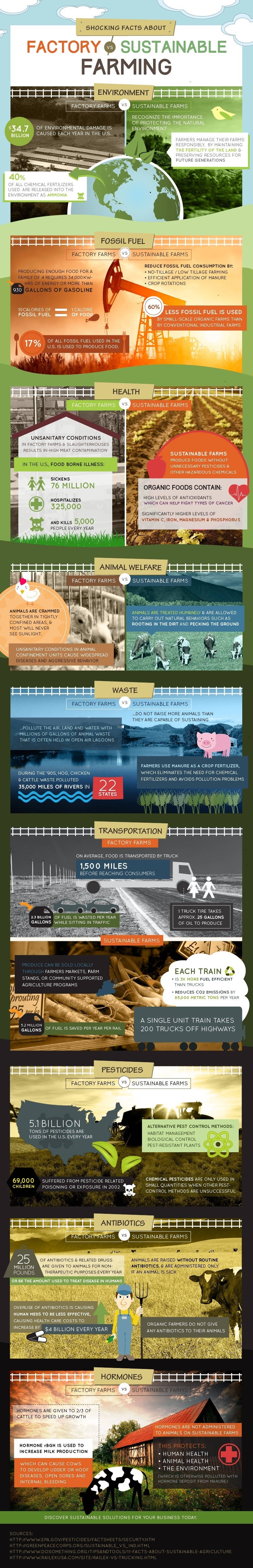 Shocking Facts About Factory Farming VS Sustainable Farming