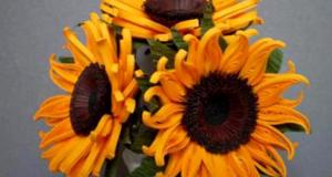 quilling-sunflower