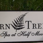 Fern Tree A Spa at Half Moon