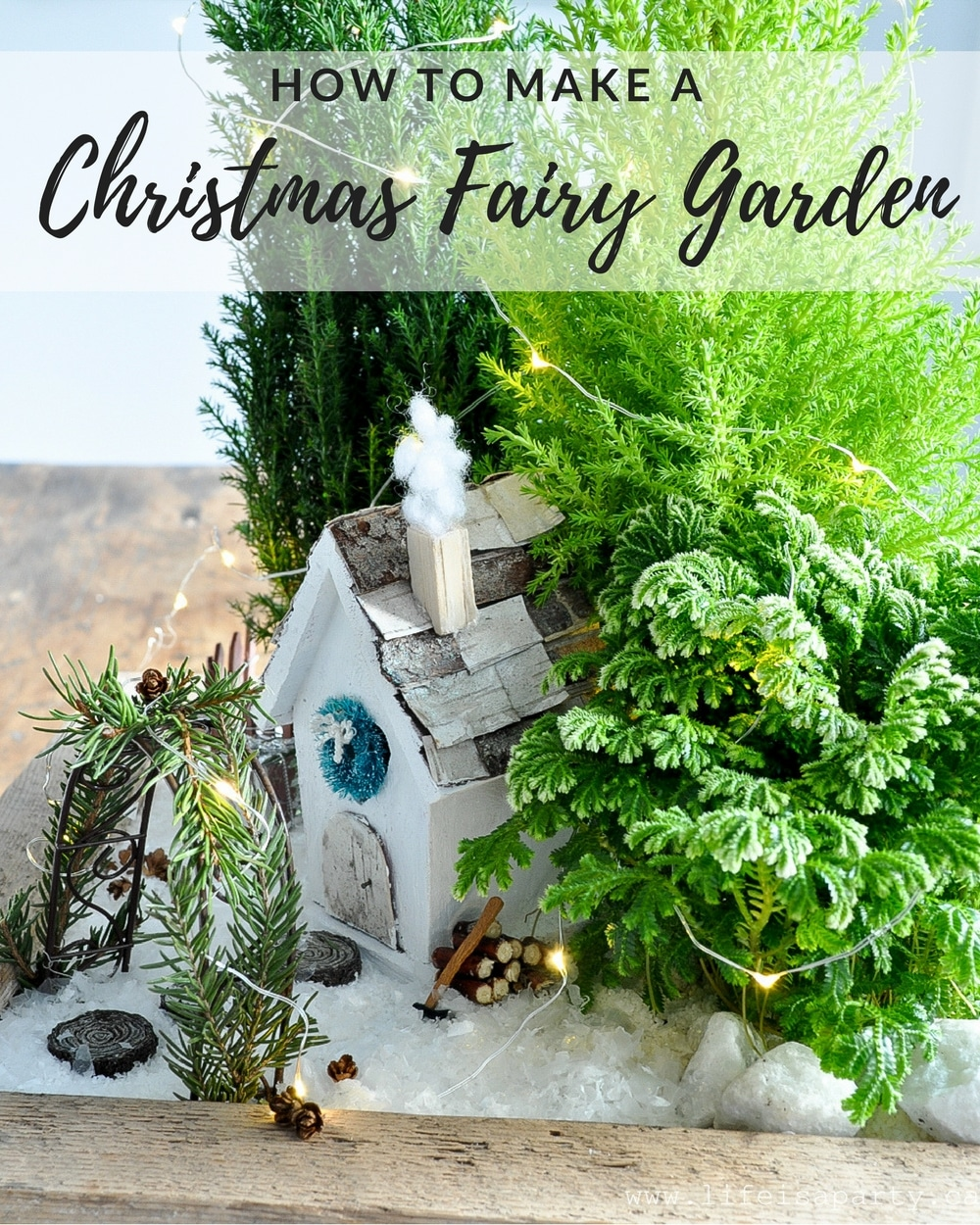 Perky How To Make A Fairy Learn How To Use Real Live Plants To How To Make A Fairy Miniature Garden Fairy Garden Ideas Fairy Garden Miniatures garden Fairy Garden Christmas
