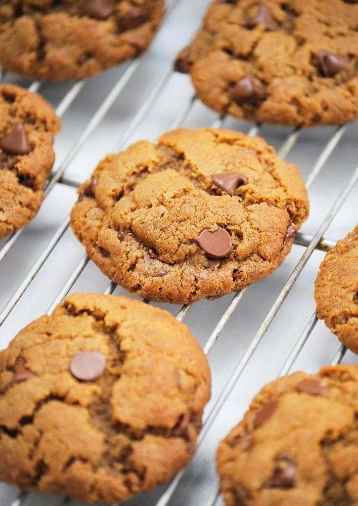 Vegetarian Peanut Butter Chocolate Chip Cookies