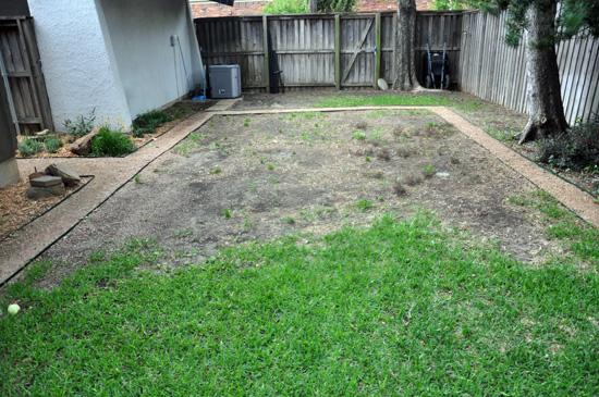 backyard drainage before