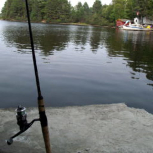 cropped-cropped-fishing-pole.jpg