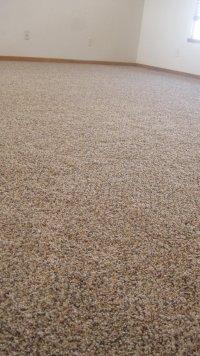 New Carpet - Carpet Vidalondon
