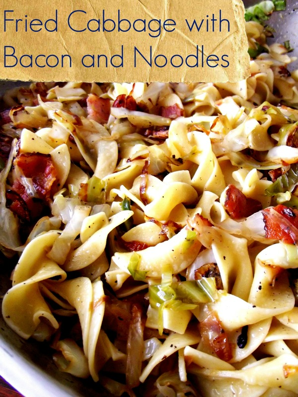 bacon cheesy cabbage recipes yummly cheesy bacon dip deeann s cheesy ...