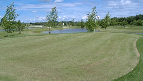Web_Site_Pictures_003-35-800-600-80