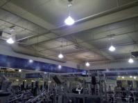 Lighting-Gallery-net - Random Fixtures/Gym Lights